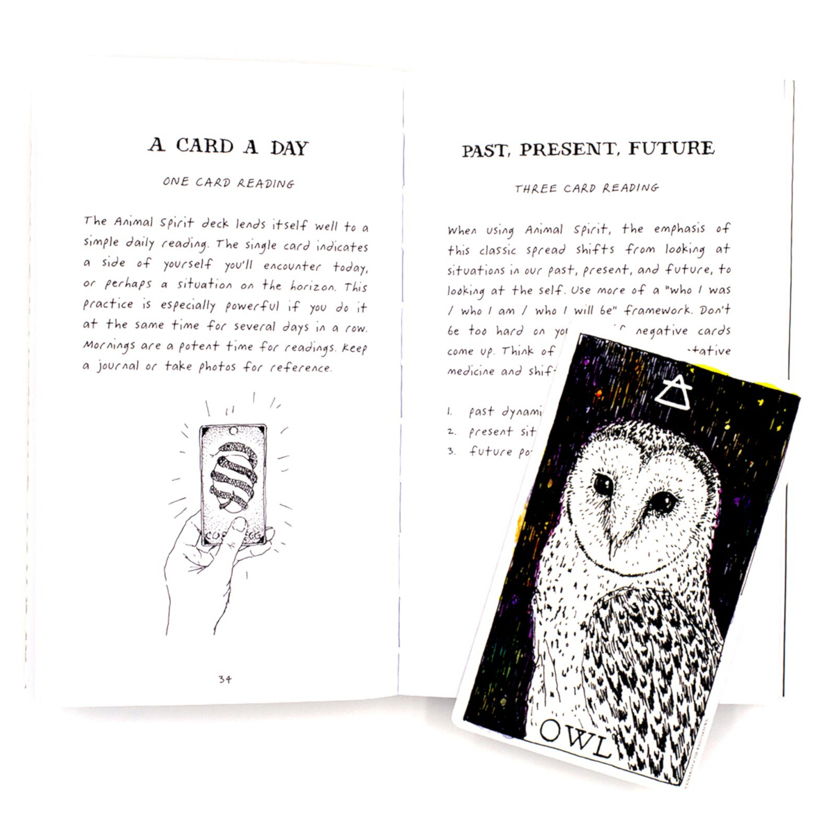 The-Wild-Unknown-Animal-Spirit-Tarot-Deck-And-Guidebook-Third-Alternate-Image