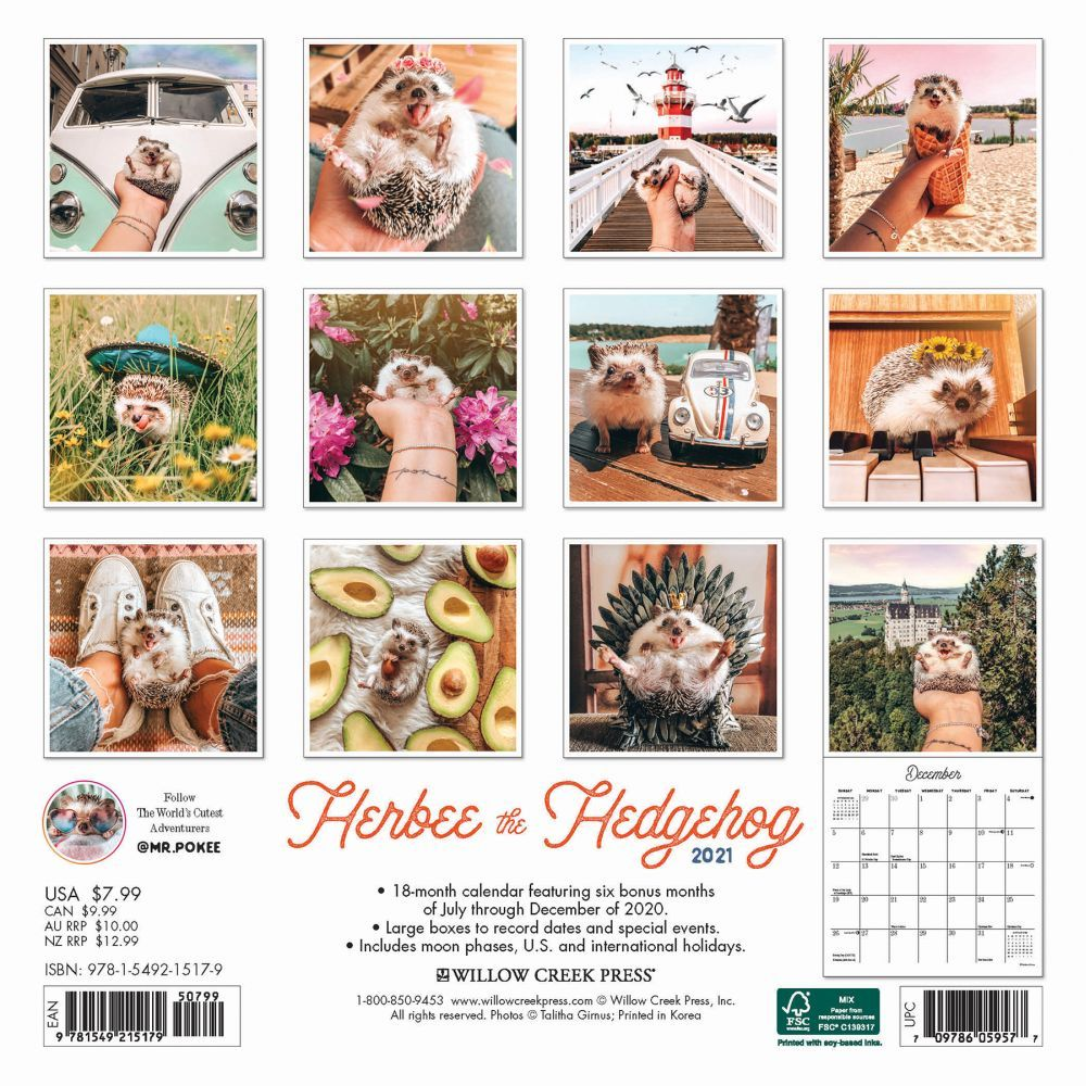 Herbee-The-Hedgehog-Mini-Calendar-First-Alternate-Image