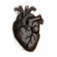 image anatomical-heart-grey-pin-main-image