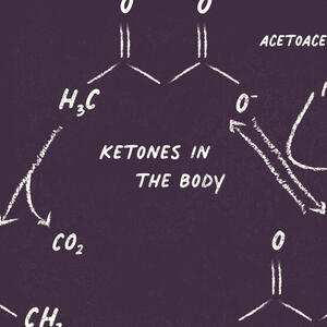 Ketones in the Body