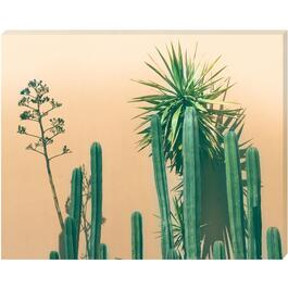 Green Cactus Canvas Art - 16in. x 20in.
