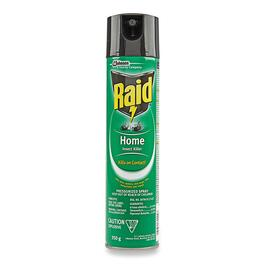 Raid Home Insect Repellent - 350g