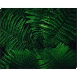 Green Botanic - 16in. x 20in.