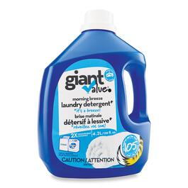 Giant Value Morning Breeze Laundry Detergent - 4.2L
