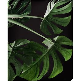Palm Leaf Canvas Art - 16in. x 20in.