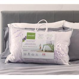 Queen Lavender Bamboo Pillow - 30in.