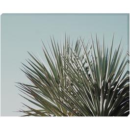 Palm Leaves - 16in. x 20in.