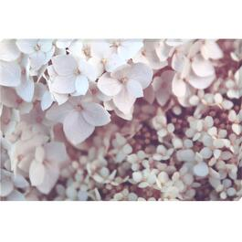 Lilac Canvas Art - 36in. x 24in.