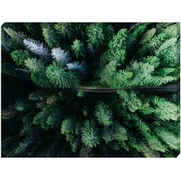 Aerial View of Trees Canvas Art - 24in. x 18in.