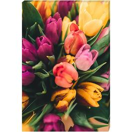 Bouquet of Tulips - 24in. x 36in.