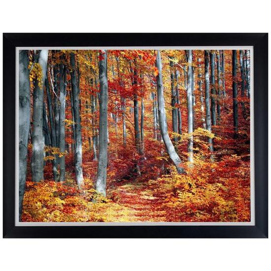 Autumn Trees 11 by Valentin Sabu Framed Art - 44in.