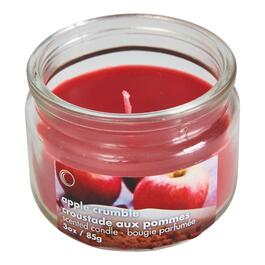 Apple Crumble Scented Jar Candle - 3oz.