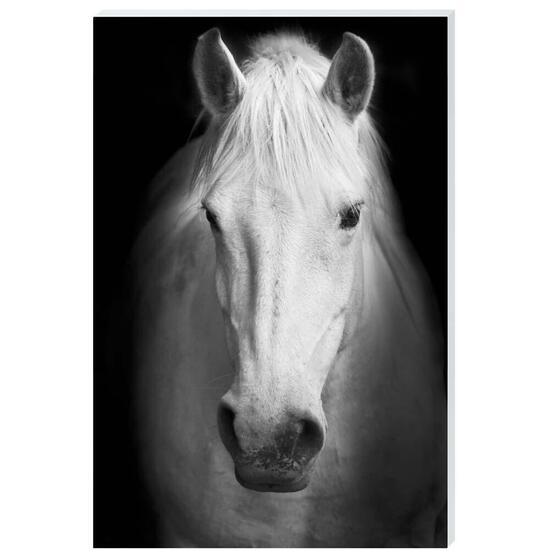 Friend In Deed Canvas Art - 24in. x 36in.