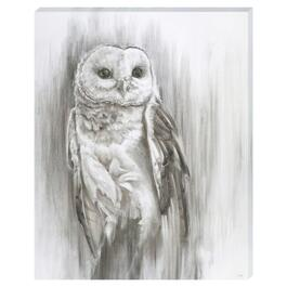Living Owl Canvas Art - 16in. x 20in.