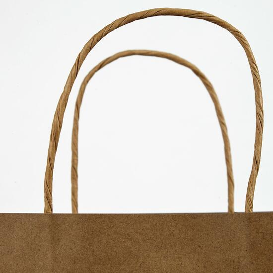 Medium Kraft Paper Bag - 250pk.
