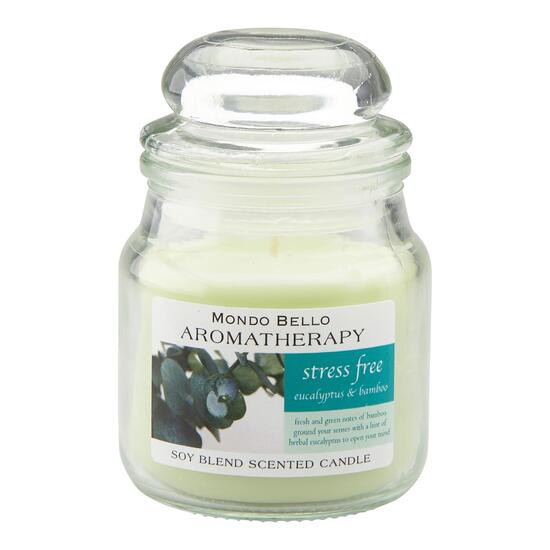 Stress Free Aromatherapy Jar Candle - 3.5oz.
