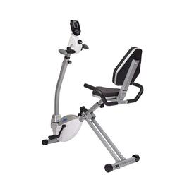 Stamina Recumbent Bike with Upper Body