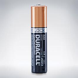 Duracell Coppertop AAA Batteries - 4pk.