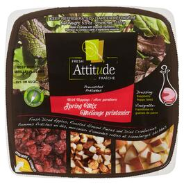 Fresh Attitude Spring Mix Salad Kit - 155g