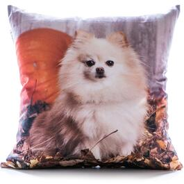 Gouchee Design Pomeranian Cushion - 18in.