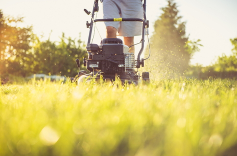 Read Article on Know How to Care for Your Lawn