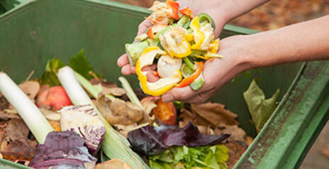 Read Article on How to Start Composting